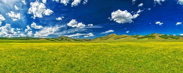 údolí květin